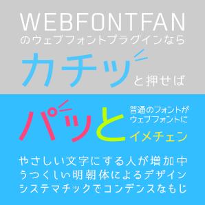 webfont-pluginwp