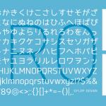 フロップデザインwebフォントpro